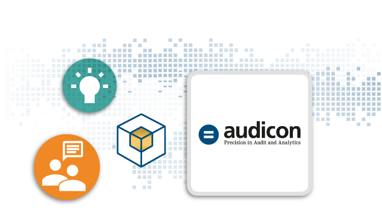 Audicon – Precision in Audit and Analytics
